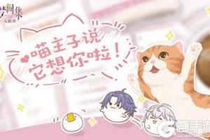 梦间集宠物猫怎么玩_梦间集宠物猫玩法攻略