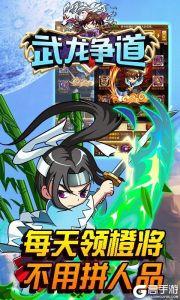 武龍爭道(超V版)游戲截圖-3