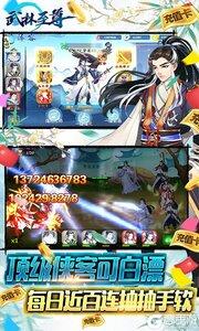 武林至尊BT版游戏截图-3