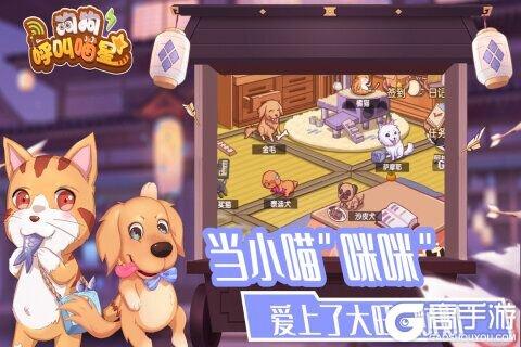 狗狗呼叫喵星电脑版游戏截图-0