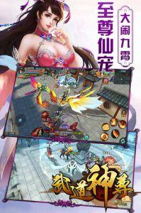 武道神尊游戏截图-2