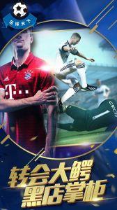 足球天下電腦版游戲截圖-2