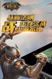 巨龙之战游戏截图-0