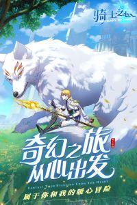 骑士之心电脑版游戏截图-4