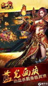 龍與勇士(移動)游戲截圖-3
