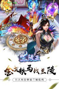 兰陵王游戏截图-3