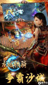 龙城铁骑电脑版游戏截图-4
